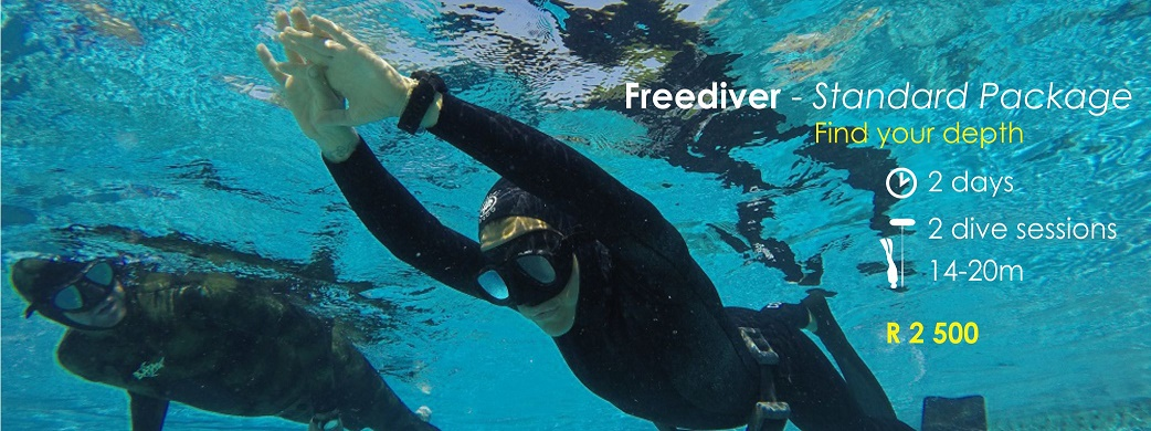 freediver package header3
